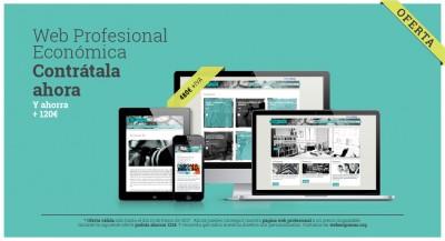 página web profesional oferta
